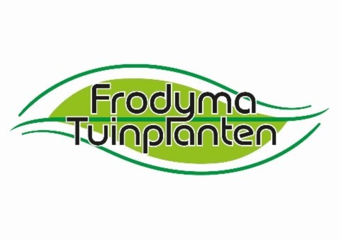 2019-Frodyma.jpg